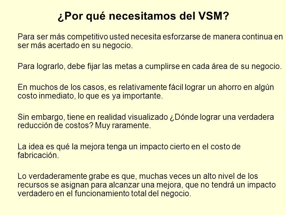 ¿Por qué necesitamos del VSM