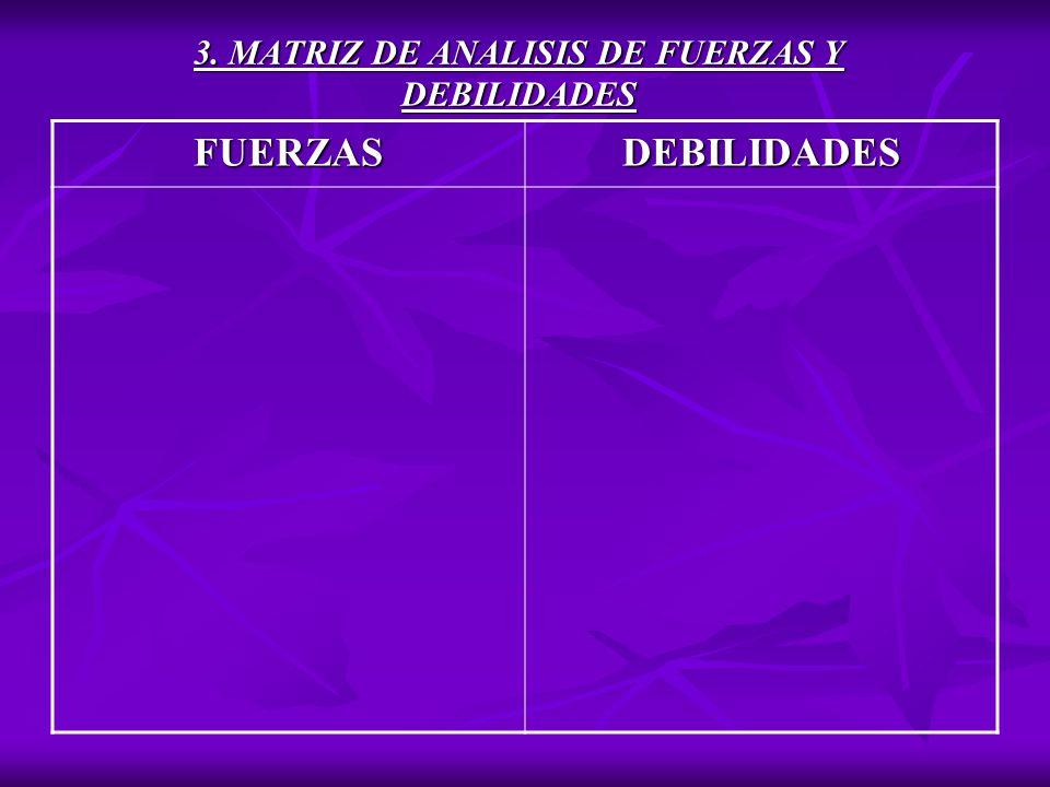 3. MATRIZ DE ANALISIS DE FUERZAS Y DEBILIDADES