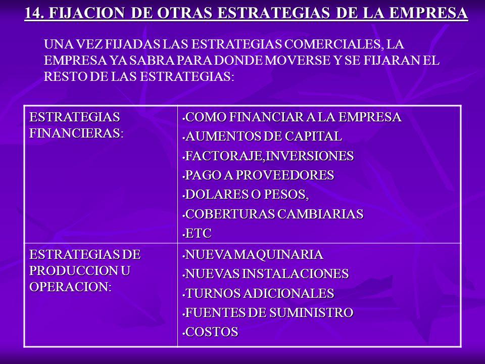 14. FIJACION DE OTRAS ESTRATEGIAS DE LA EMPRESA