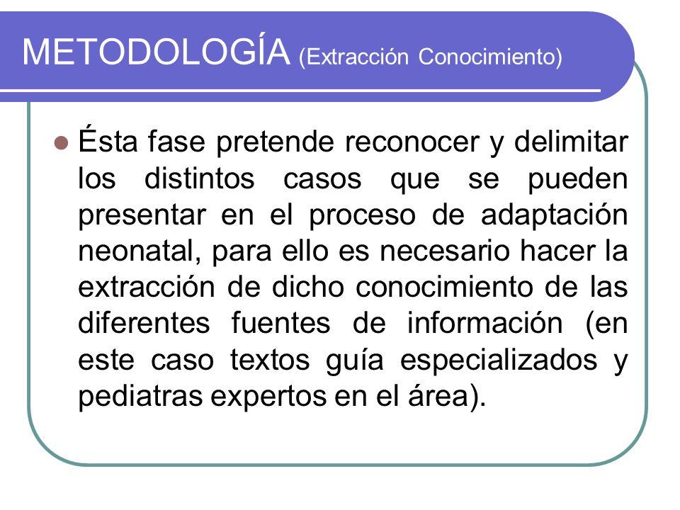 METODOLOGÍA (Extracción Conocimiento)