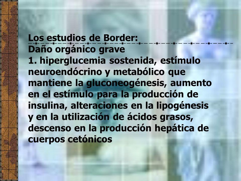 Los estudios de Border:
