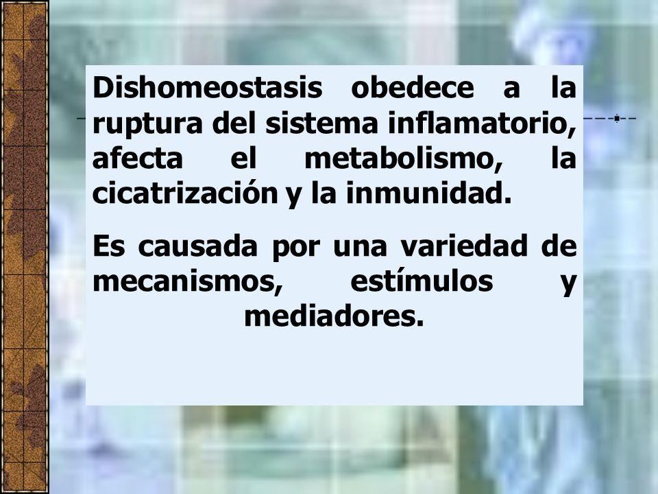 Dishomeostasis obedece a la ruptura del sistema inflamatorio, afecta el metabolismo, la cicatrización y la inmunidad.