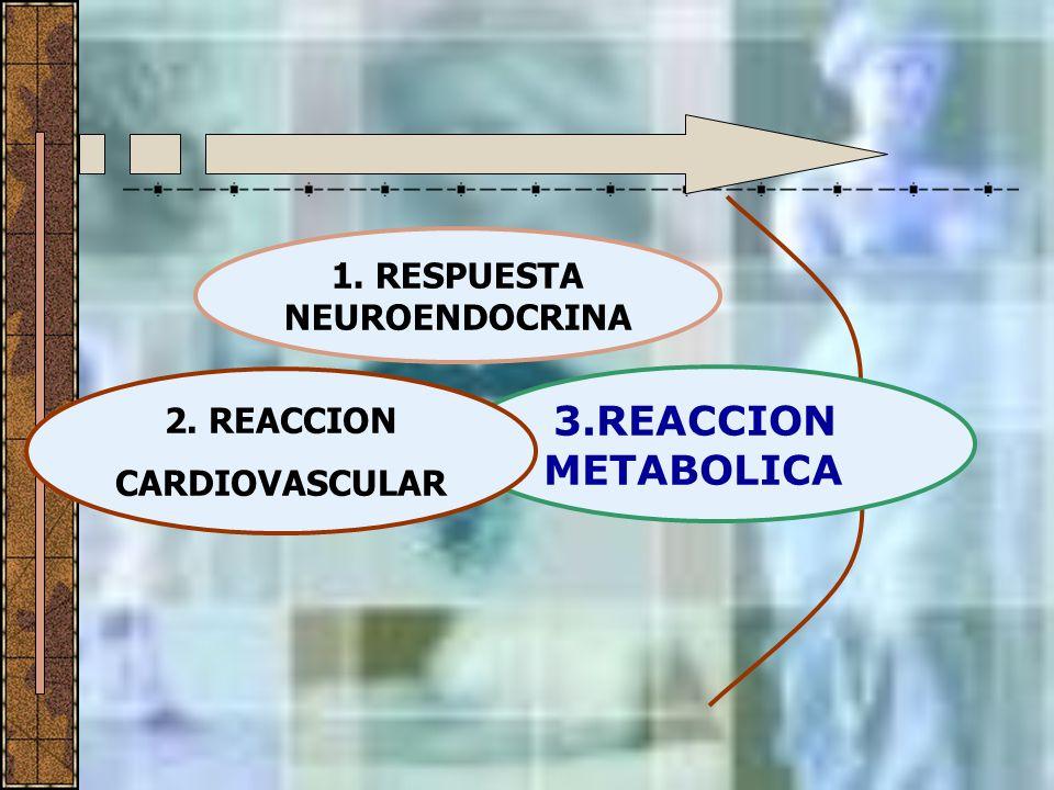 1. RESPUESTA NEUROENDOCRINA