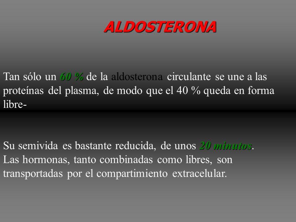 ALDOSTERONA Tan sólo un 60 % de la aldosterona circulante se une a las proteínas del plasma, de modo que el 40 % queda en forma libre-