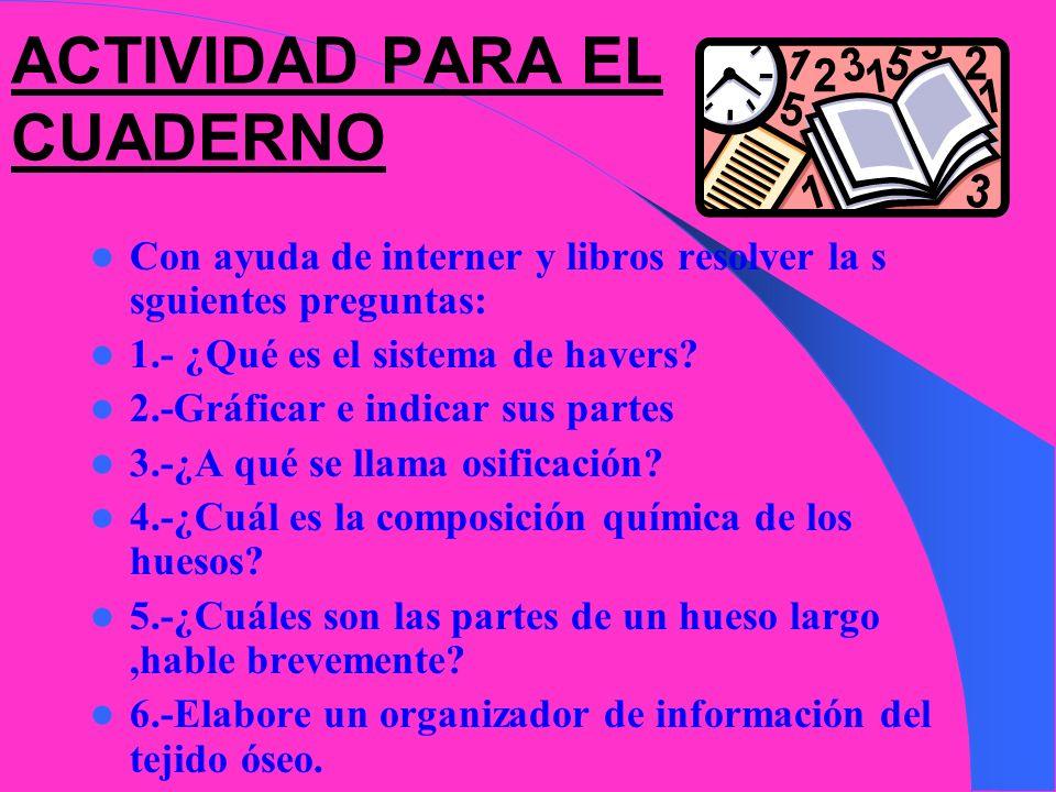 ACTIVIDAD PARA EL CUADERNO