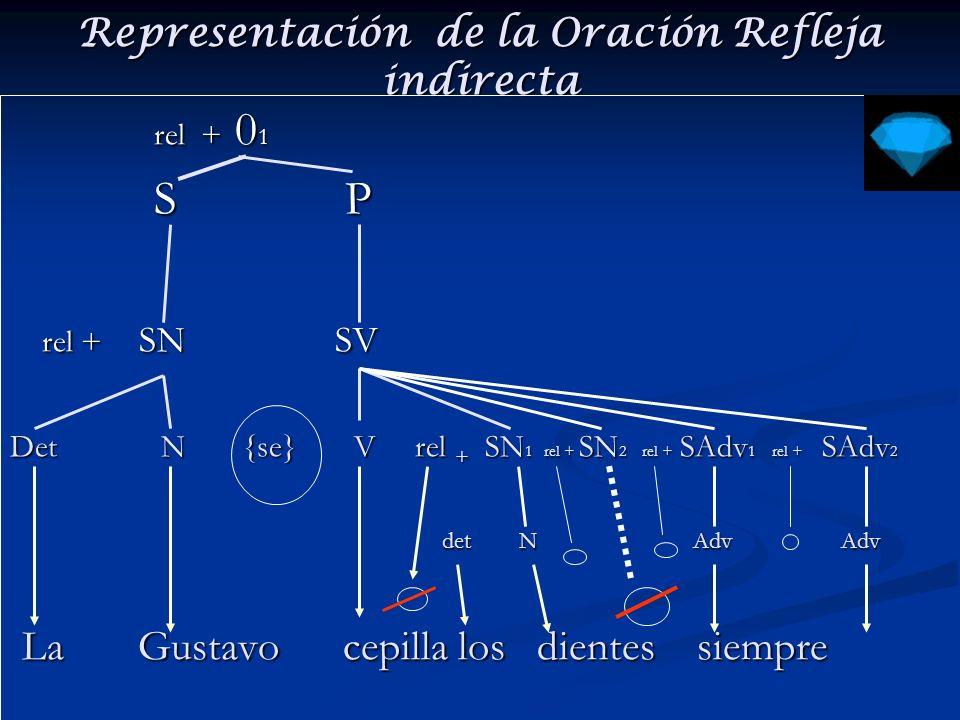 Representación de la Oración Refleja indirecta