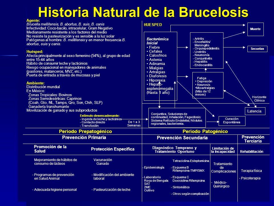 Historia Natural de la Brucelosis