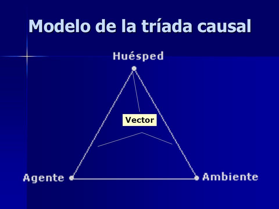 Modelo de la tríada causal