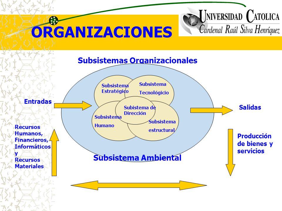 Subsistemas Organizacionales