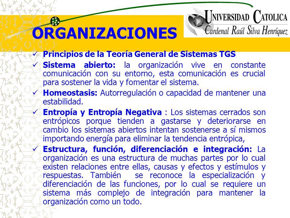 ORGANIZACIONES Principios de la Teoría General de Sistemas TGS