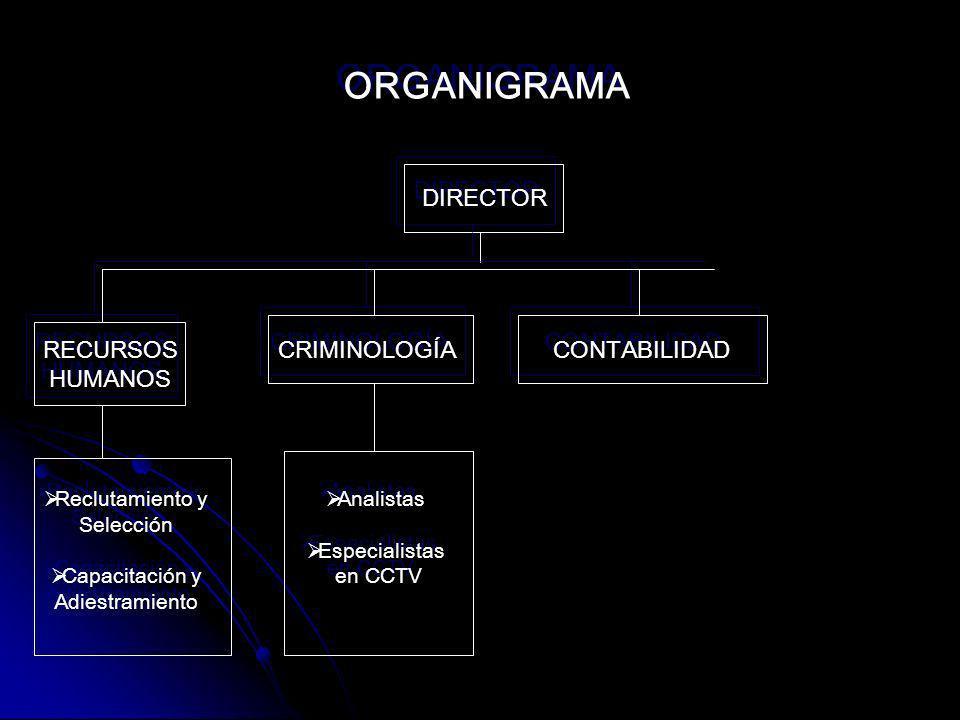 ORGANIGRAMA DIRECTOR RECURSOS HUMANOS CRIMINOLOGÍA CONTABILIDAD