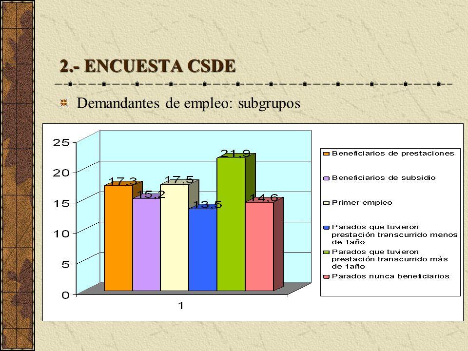 2.- ENCUESTA CSDE Demandantes de empleo: subgrupos