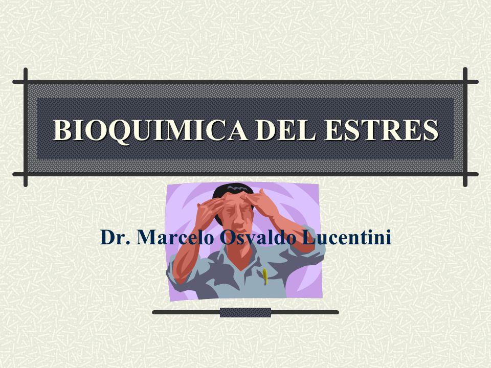 Dr. Marcelo Osvaldo Lucentini