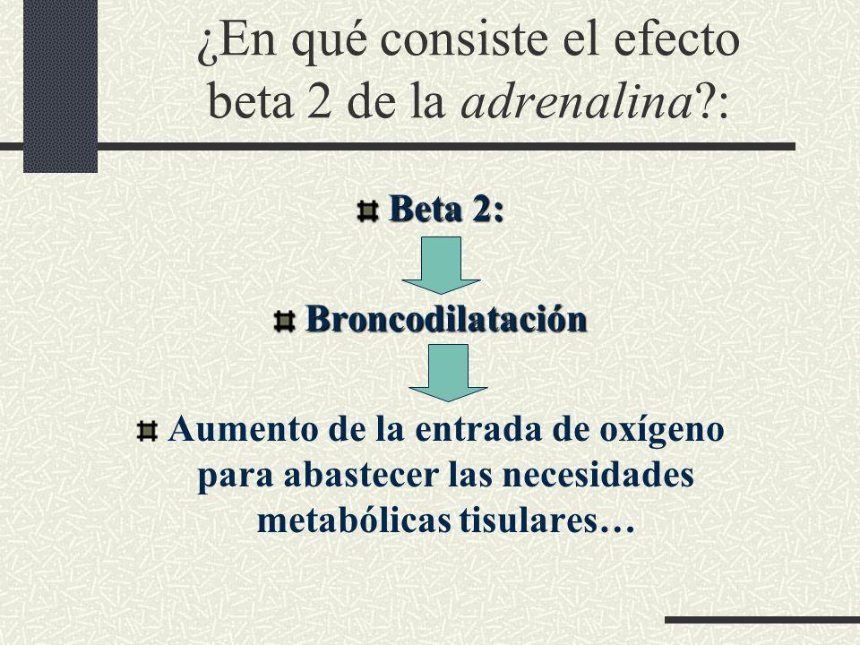 ¿En qué consiste el efecto beta 2 de la adrenalina :