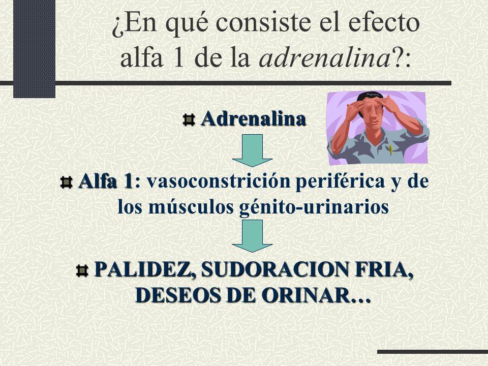 ¿En qué consiste el efecto alfa 1 de la adrenalina :