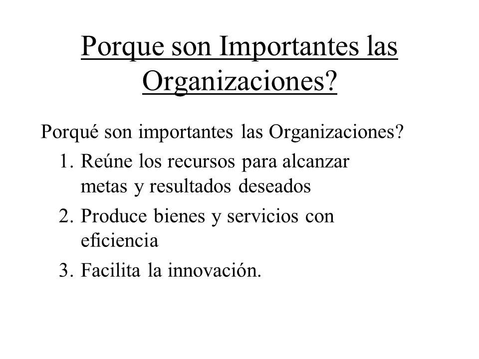 Porque son Importantes las Organizaciones
