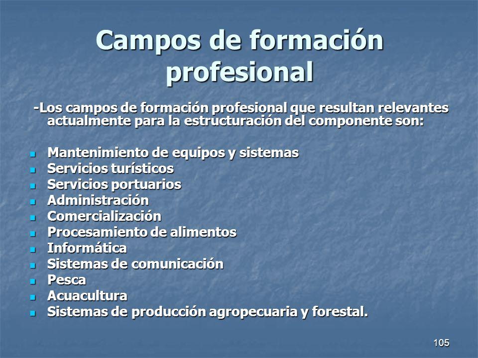 Campos de formación profesional