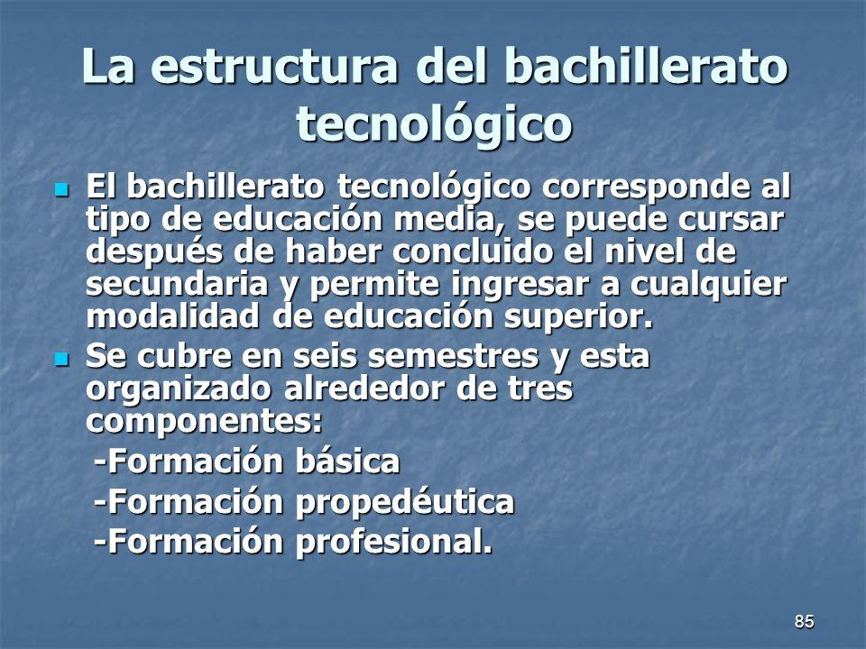 La estructura del bachillerato tecnológico