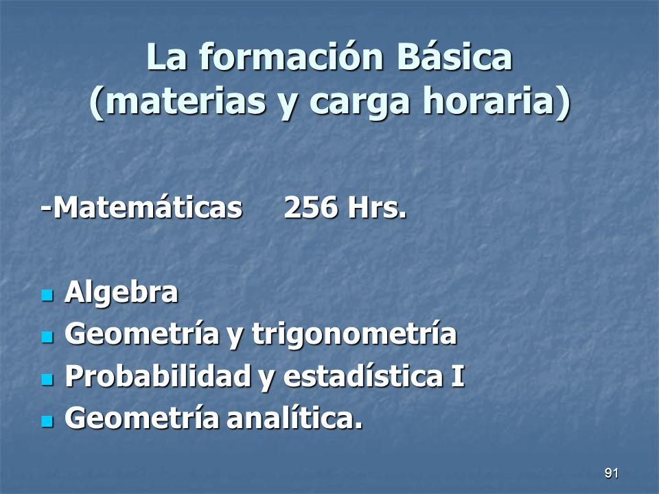 La formación Básica (materias y carga horaria)