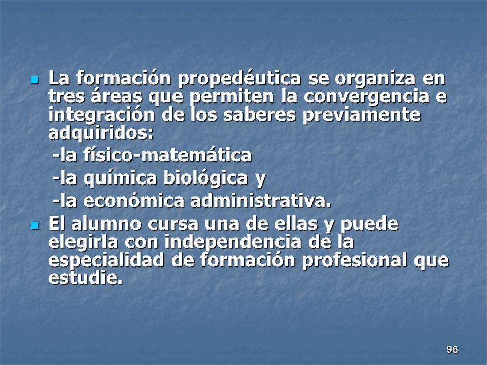 La formación propedéutica se organiza en tres áreas que permiten la convergencia e integración de los saberes previamente adquiridos: