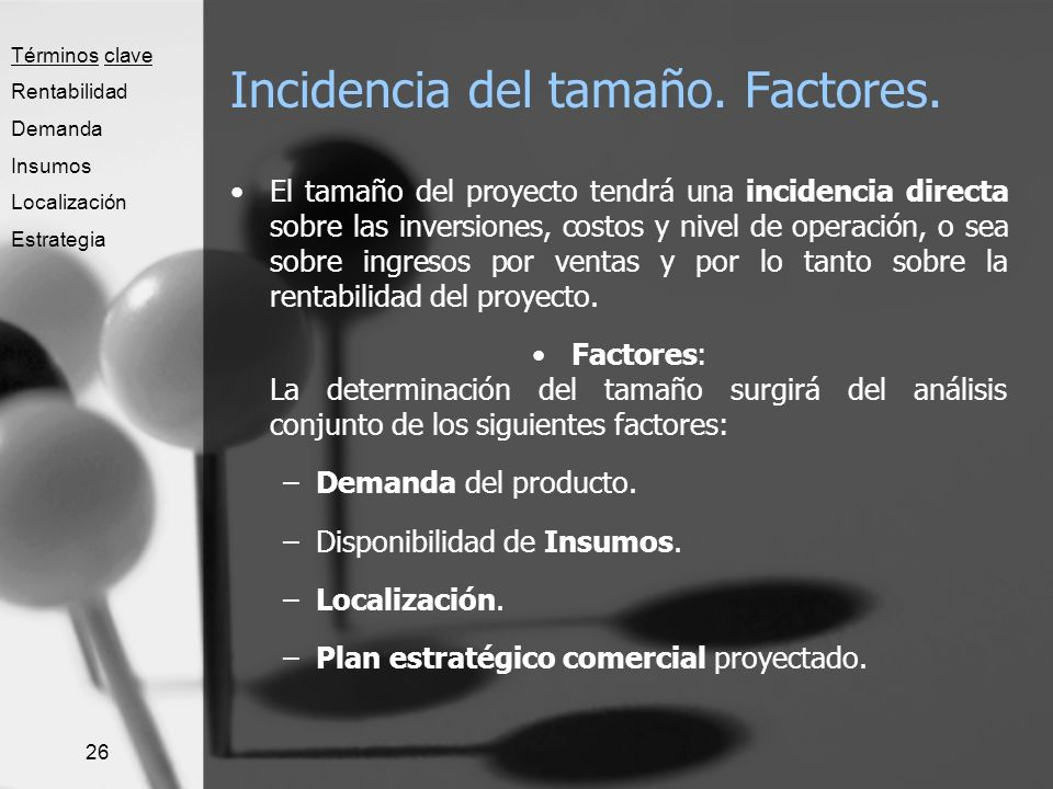Incidencia del tamaño. Factores.
