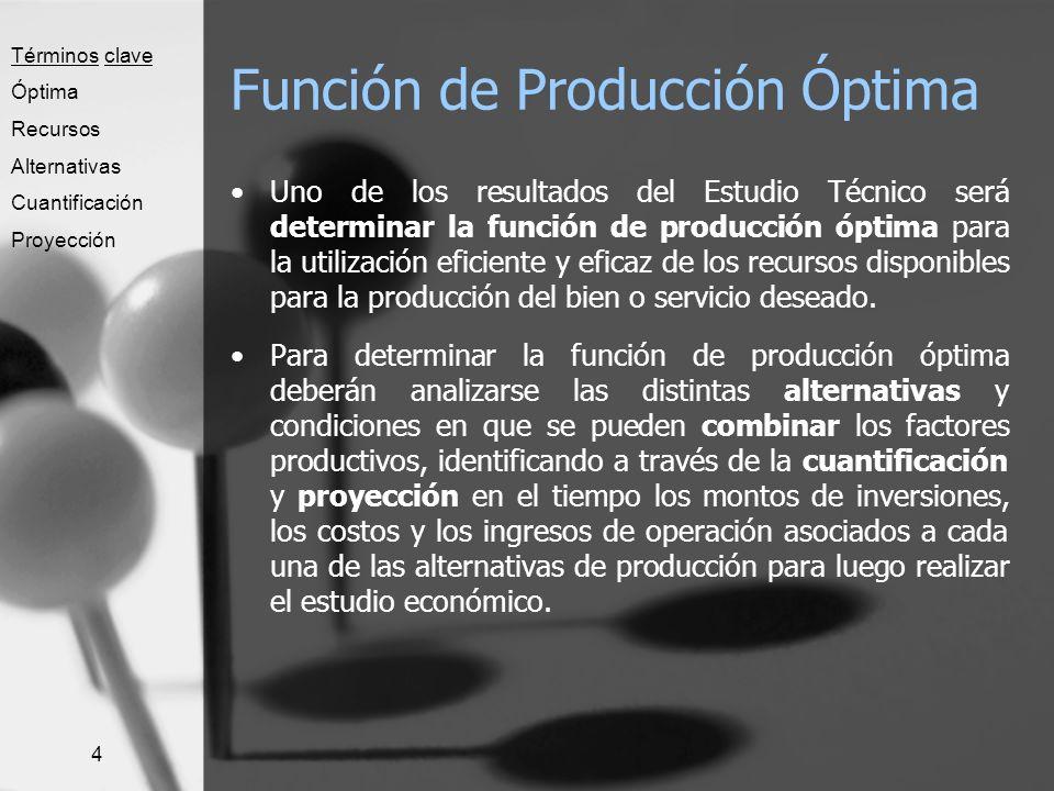 Función de Producción Óptima