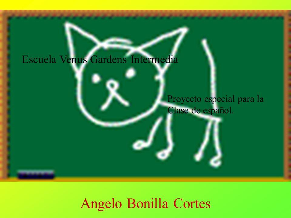 Angelo Bonilla Cortes Escuela Venus Gardens Intermedia
