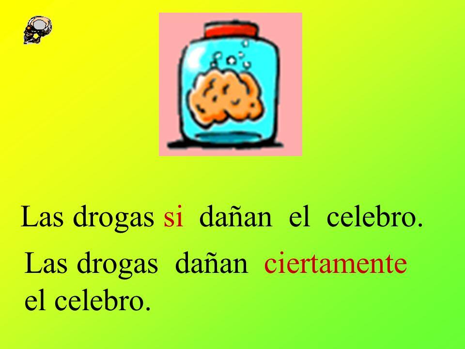Las drogas si dañan el celebro.
