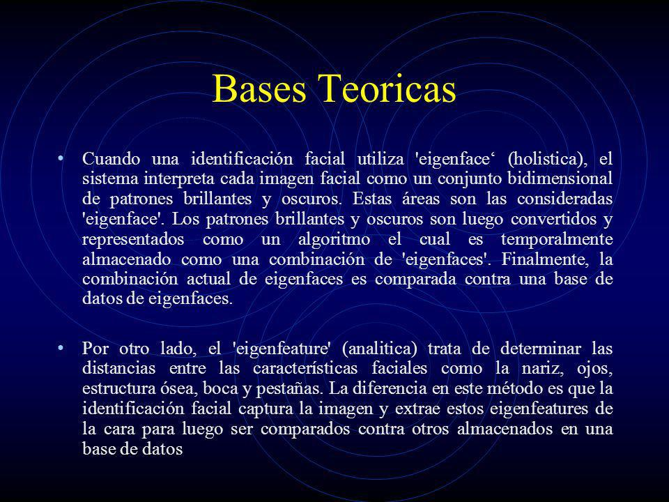 Bases Teoricas