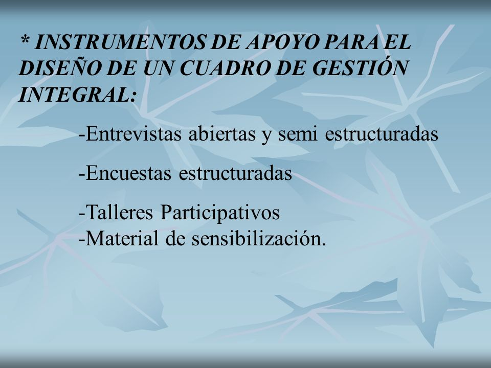 * INSTRUMENTOS DE APOYO PARA EL DISEÑO DE UN CUADRO DE GESTIÓN INTEGRAL: