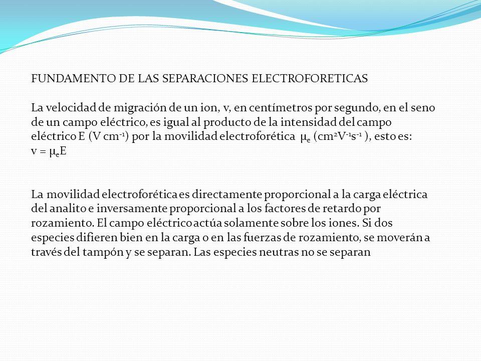 FUNDAMENTO DE LAS SEPARACIONES ELECTROFORETICAS