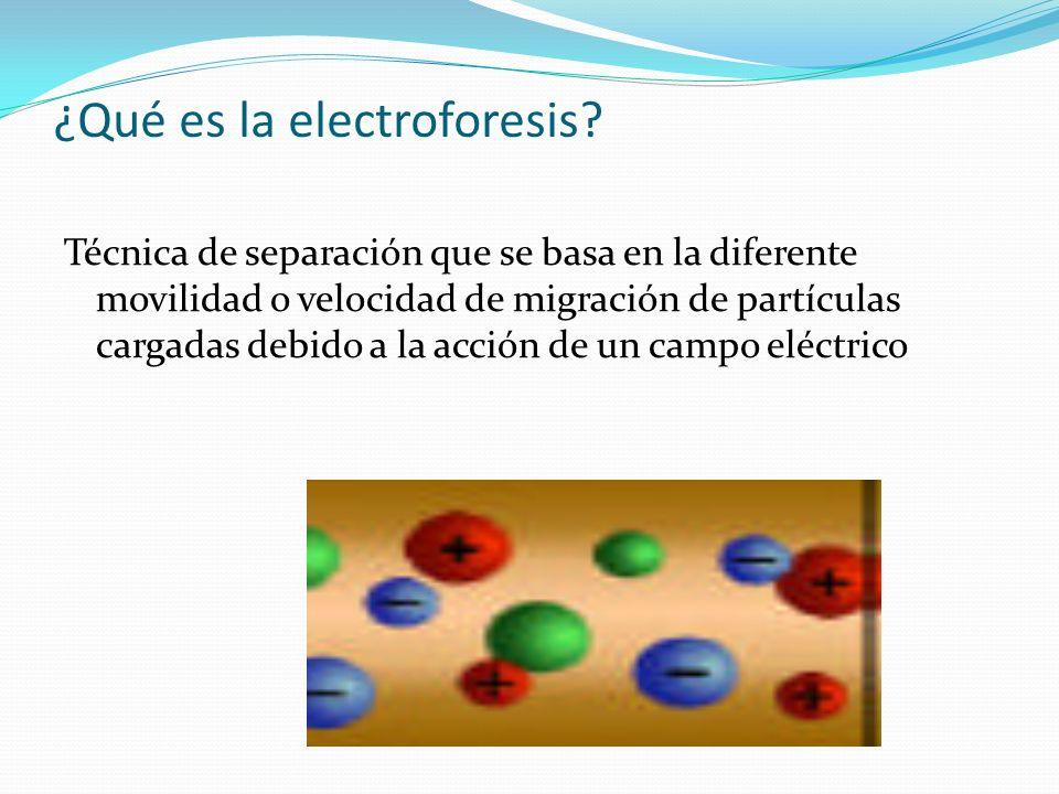 ¿Qué es la electroforesis