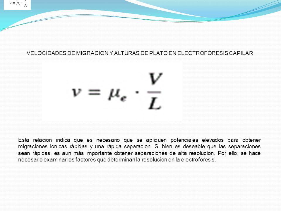 VELOCIDADES DE MIGRACION Y ALTURAS DE PLATO EN ELECTROFORESIS CAPILAR