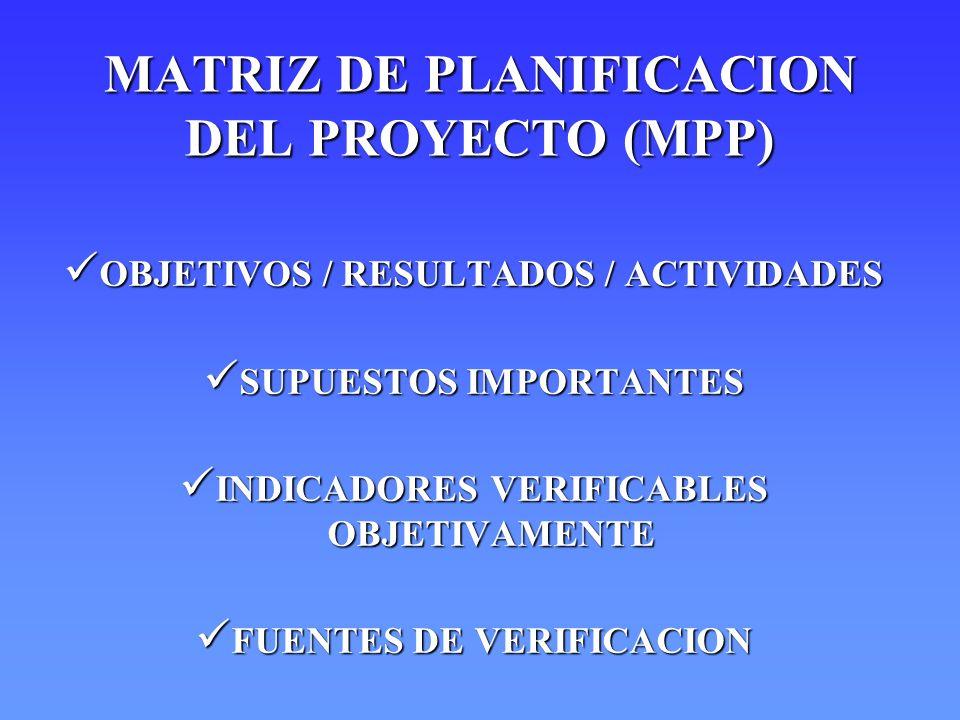 MATRIZ DE PLANIFICACION DEL PROYECTO (MPP)