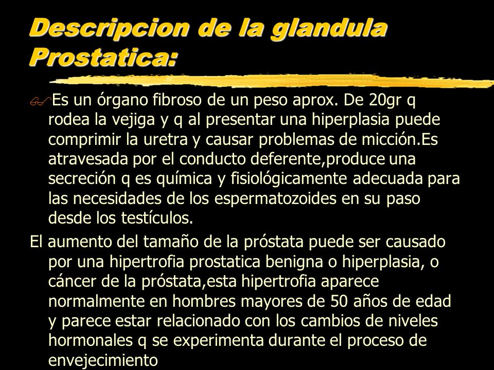 Descripcion de la glandula Prostatica:
