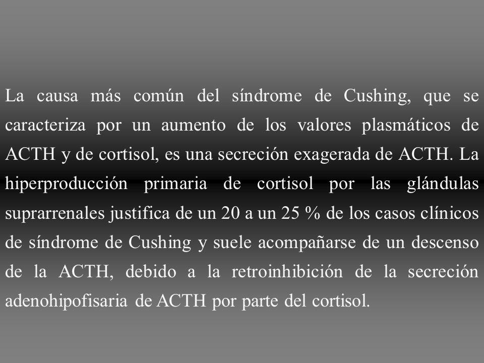 La causa más común del síndrome de Cushing, que se caracteriza por un aumento de los valores plasmáticos de ACTH y de cortisol, es una secreción exagerada de ACTH.