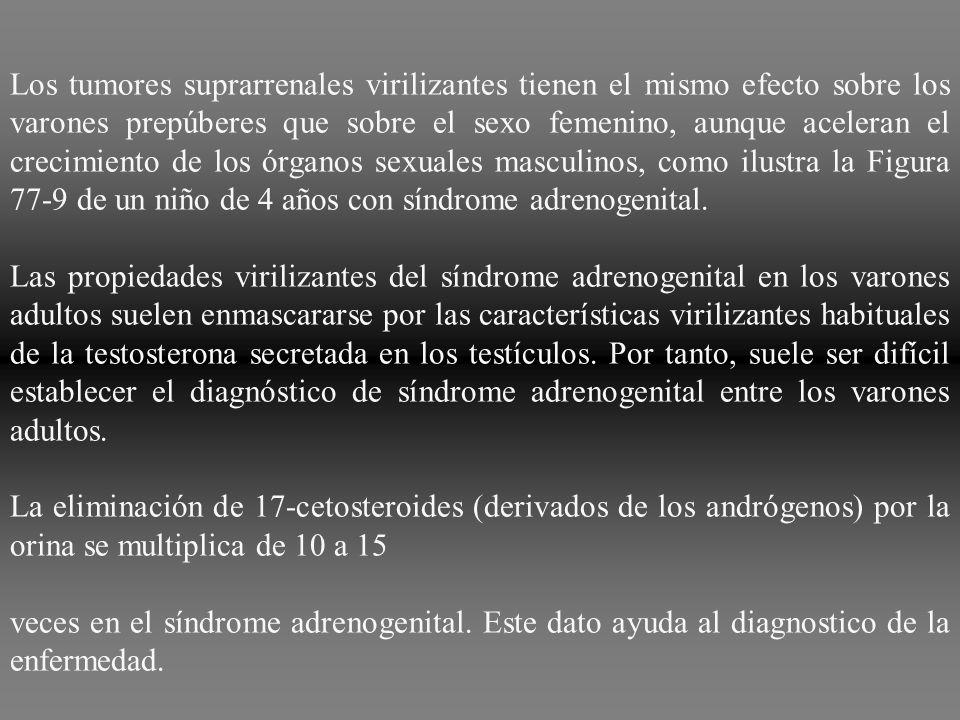 Los tumores suprarrenales virilizantes tienen el mismo efecto sobre los varones prepúberes que sobre el sexo femenino, aunque aceleran el crecimiento de los órganos sexuales masculinos, como ilustra la Figura 77‑9 de un niño de 4 años con síndrome adrenogenital.