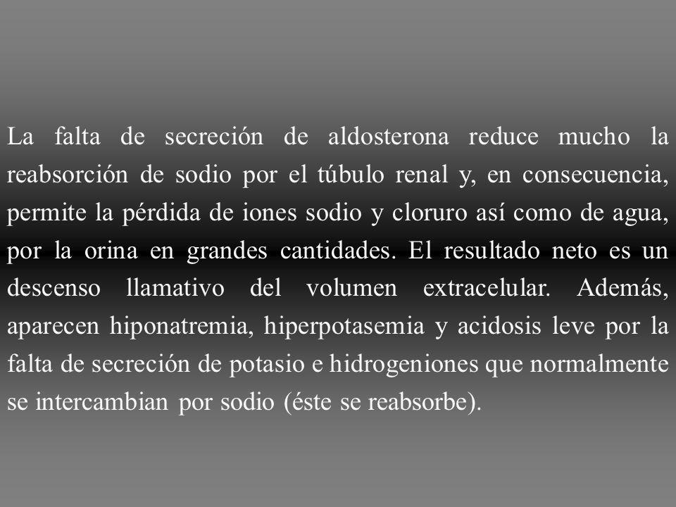 La falta de secreción de aldosterona reduce mucho la reabsorción de sodio por el túbulo renal y, en consecuencia, permite la pérdida de iones sodio y cloruro así como de agua, por la orina en grandes cantidades.