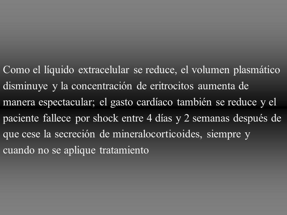 Como el líquido extracelular se reduce, el volumen plasmático disminuye y la concentración de eritrocitos aumenta de manera espectacular; el gasto cardíaco también se reduce y el paciente fallece por shock entre 4 días y 2 semanas después de que cese la secreción de mineralocorticoides, siempre y cuando no se aplique tratamiento