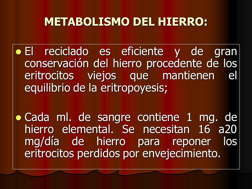 METABOLISMO DEL HIERRO: