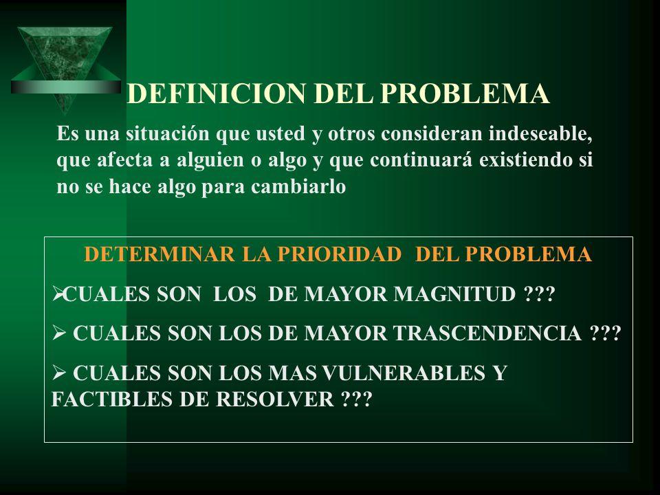 DEFINICION DEL PROBLEMA DETERMINAR LA PRIORIDAD DEL PROBLEMA