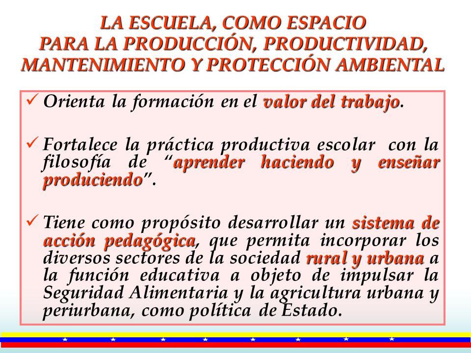 LA ESCUELA, COMO ESPACIO PARA LA PRODUCCIÓN, PRODUCTIVIDAD, MANTENIMIENTO Y PROTECCIÓN AMBIENTAL