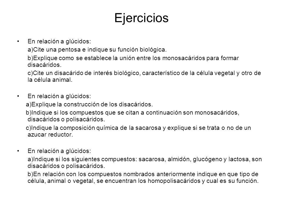 Ejercicios En relación a glúcidos:
