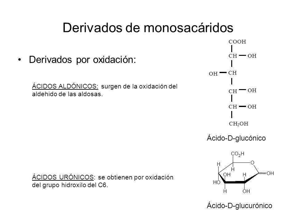 Derivados de monosacáridos