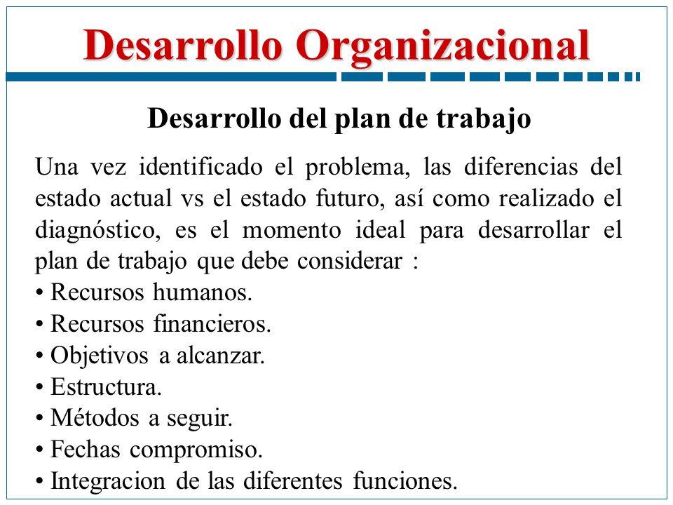 Desarrollo del plan de trabajo