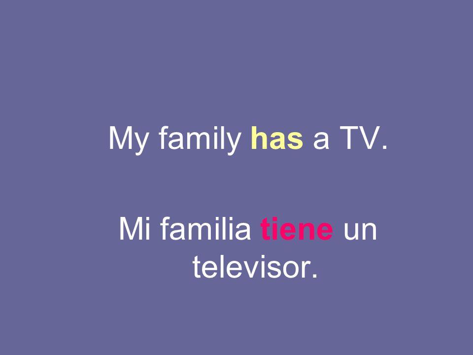 Mi familia tiene un televisor.