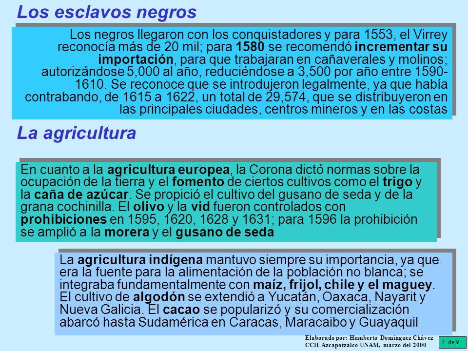 Los esclavos negros La agricultura
