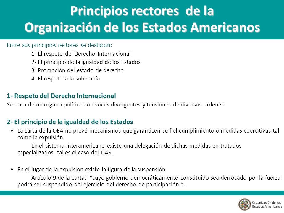 Principios rectores de la Organización de los Estados Americanos