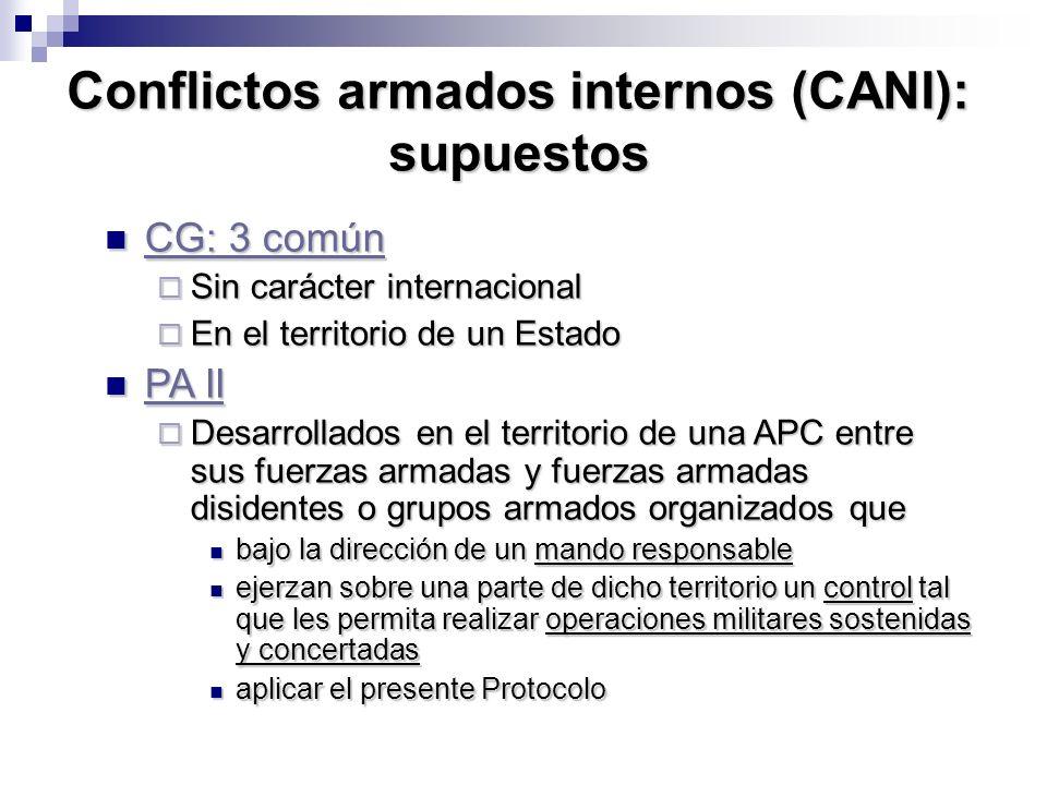 Conflictos armados internos (CANI): supuestos