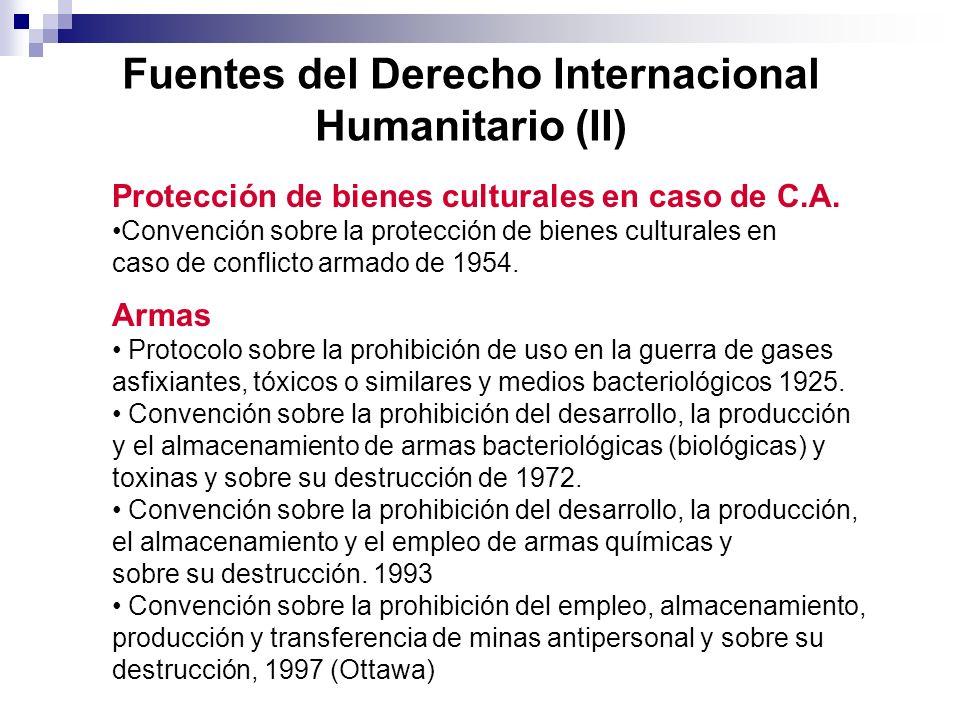 Fuentes del Derecho Internacional Humanitario (II)